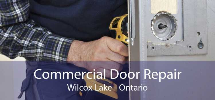 Commercial Door Repair Wilcox Lake - Ontario