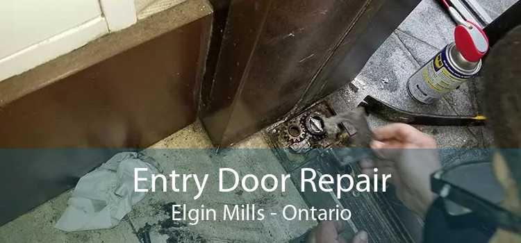 Entry Door Repair Elgin Mills - Ontario