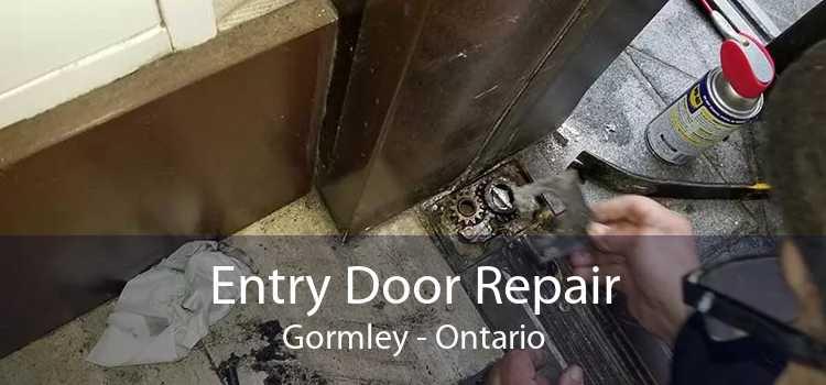 Entry Door Repair Gormley - Ontario