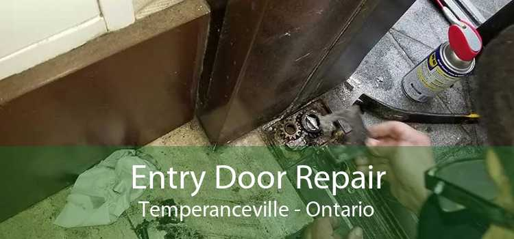 Entry Door Repair Temperanceville - Ontario