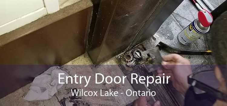 Entry Door Repair Wilcox Lake - Ontario