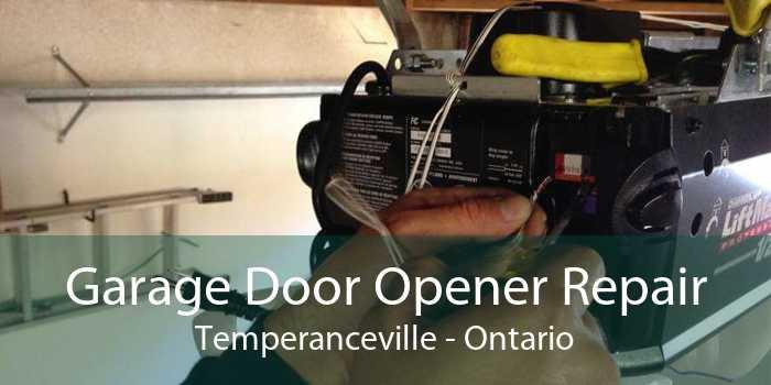 Garage Door Opener Repair Temperanceville - Ontario
