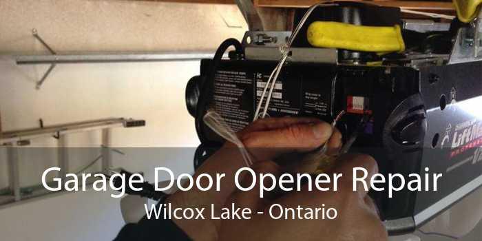 Garage Door Opener Repair Wilcox Lake - Ontario
