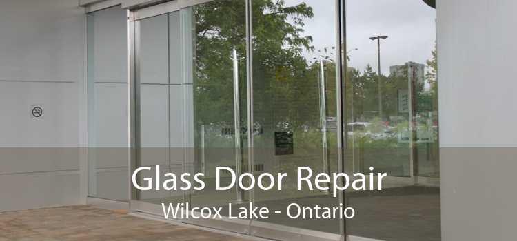 Glass Door Repair Wilcox Lake - Ontario