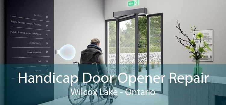 Handicap Door Opener Repair Wilcox Lake - Ontario