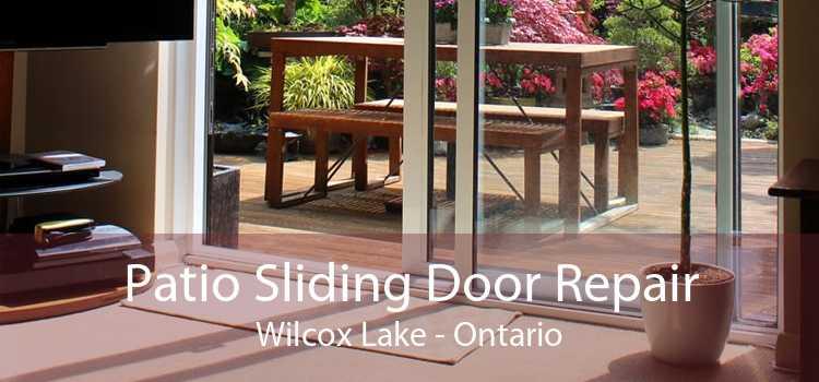 Patio Sliding Door Repair Wilcox Lake - Ontario
