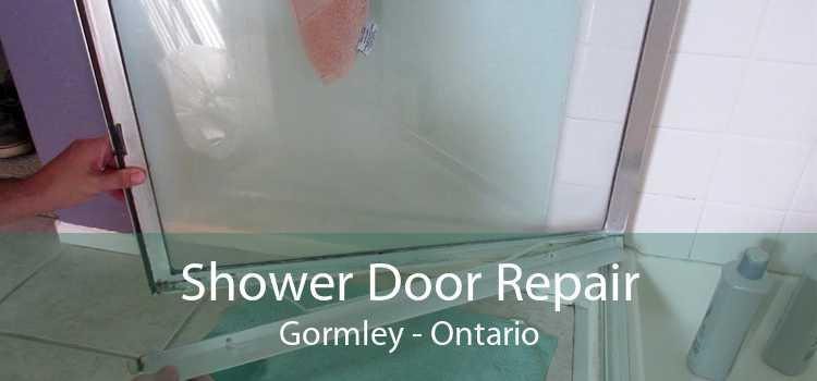 Shower Door Repair Gormley - Ontario