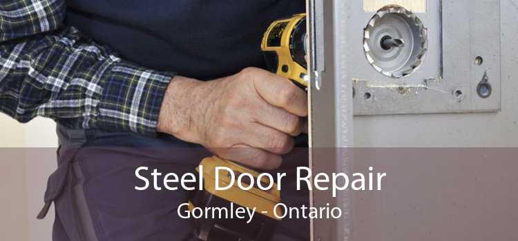 Steel Door Repair Gormley - Ontario
