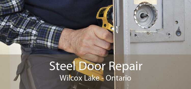 Steel Door Repair Wilcox Lake - Ontario