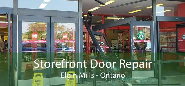 Storefront Door Repair Elgin Mills - Ontario