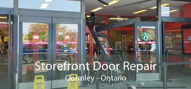 Storefront Door Repair Gormley - Ontario