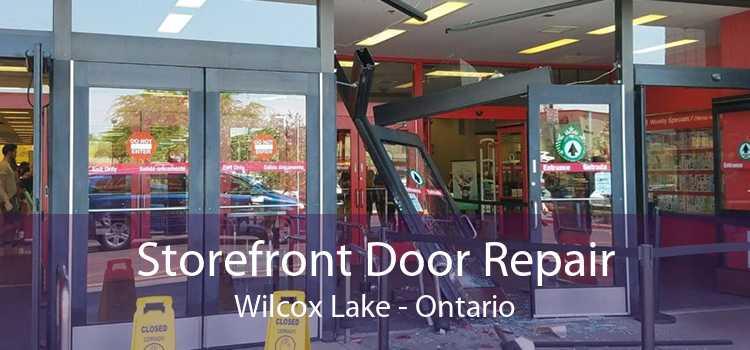 Storefront Door Repair Wilcox Lake - Ontario